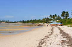 Vilanculos Beach, Mozambique Stock Images