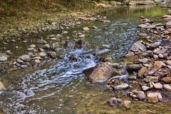 Vilasha rzeka z pięknymi brzeg zdjęcie stock