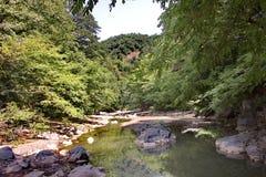 Vilasha rzeka z pięknymi brzeg obrazy royalty free