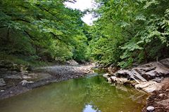 Vilasha rzeka z pięknymi brzeg obrazy stock