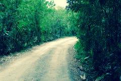 Vilcabamba Ecuador, denna är ingen gul tegelstenväg Arkivfoton