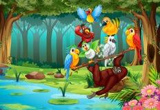 Vilda djur i skogen royaltyfri illustrationer