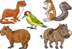 Vilda djur ställde in tecknad filmillustrationen Royaltyfria Bilder
