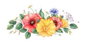 vildblommar Bukett av den röda och gula vallmo, blåklinter, kamomillen och örter Dragen illustration för vattenfärg hand royaltyfria foton