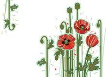 Rött blommakort Arkivbilder