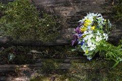 Vildblommor Fotografering för Bildbyråer