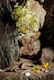 Vildblommor på altaret i jordfästningkulle Arkivbild