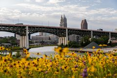 Vildblommor som inramar denCarnegie bron - Ohio rutt 10 - Cuyahoga flod - i stadens centrum Cleveland, Ohio Royaltyfria Foton