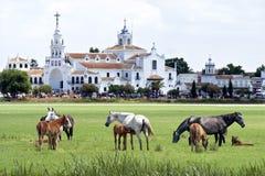 Vildhästar och berömd pilgrimsfärdkyrka El Rocio fotografering för bildbyråer