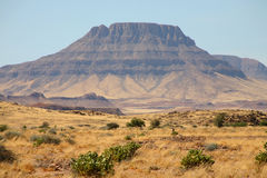 Vildmark i Namibia Royaltyfri Fotografi