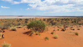 Vildmark saltflat3 Arkivbilder