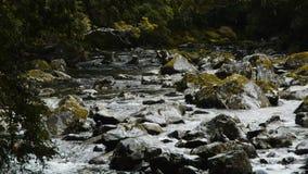 Vildmarkbergflod lager videofilmer