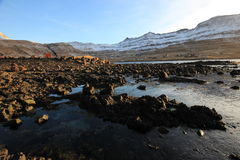 Vildmarken av Faroeen Island Fotografering för Bildbyråer