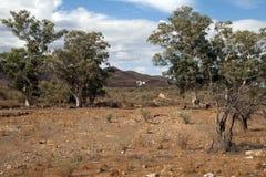 Vildmarklandskapet i Flinders spänner med väderkvarnen fotografering för bildbyråer