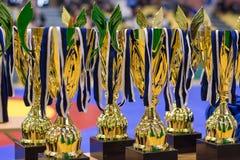 Viljandi, ESTONIA - FEBRUARY 20, 2016: Unidentified golden cups during Estonian freestyle wrestling tournament. stock image