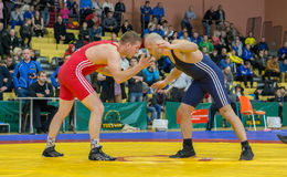 Viljandi, ESTONIA - FEBRUARY 20, 2016: Unidentified wrestlers during Estonian freestyle wrestling tournament. stock photos