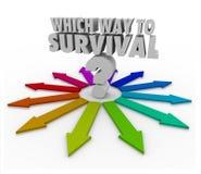 Vilken väg till överlevnadfrågepilar som pekar vägen Arkivfoto