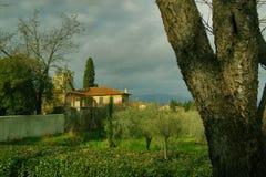 Villa à Florence Photographie stock libre de droits