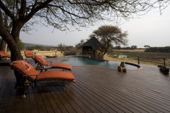 The Villa. Africat Foundation promoting large carnivore conservation and animal welfare Stock Image