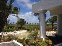 Villa Anguilla Caribbean. Plant Palm Rock Stock Images