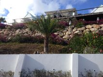 Villa Anguilla Hotel Rock Bush Flowers Royalty Free Stock Images