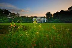 Villa auf einem Gebiet Stockbild