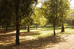 Villa Borghese Stock Photos