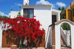 Villa with bougainvillea, Andalusia. Whitewashed villa covered with bougainvillea, Urb. Calypso, Costa del Sol, Malaga Province, Andalusia, Spain, Western Stock Photography