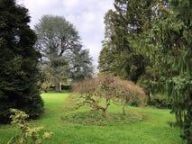 Villa Boveri Park or Der Garten der Villa Boveri or Landschaftsgarten Parkanlage der Villa Boveri, Baden. Canton of Aargau, Switzerland stock photography