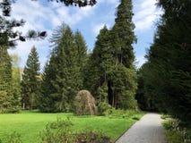 Villa Boveri Park or Der Garten der Villa Boveri or Landschaftsgarten Parkanlage der Villa Boveri, Baden. Canton of Aargau, Switzerland royalty free stock photos