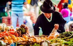 Villa de Leyva, Boyaca, Colombia - November 20th, 2014: Old indigenous woman buying fresh procucts on market. Villa de Leyva, Boyaca, Colombia - November 20th stock images