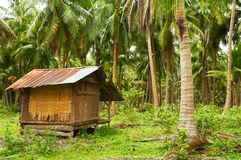 Villa de noix de coco Photos stock