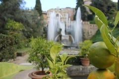 Villa de Tivoli de ` cardinal Este, Italie d'Ippolito d Images stock
