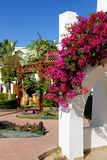 Villa decoration at the luxury hotel. Sharm el Sheikh, Egypt Stock Photos