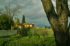 Villa in Florence. The view Villa in Florence. Tuscany, Italy royalty free stock photography