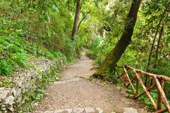 Villa Gregoriana in Tivoli. The path in Villa Gregoriana in Tivoli  Italy Royalty Free Stock Photos