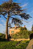 Villa on a hill surounded with pine and cypress trees in Piran Royalty Free Stock Photos