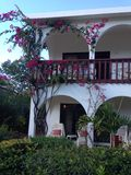 Villa Hotel Red flowers Bush. Anguilla Island Caribbean Royalty Free Stock Photo
