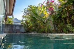 Villa i Bali Indonesien med simbassängen och grön tropisk pl arkivbild