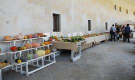 Villa Minin tijdens Floreal Festival, 2012 Stock Foto's