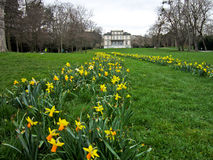 Villa Moynier, Geneve, Switzerland. Spring in the Moynier Park, Geneve, Suisse Royalty Free Stock Photo