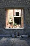 Villa Poppaea, piante ed affresco, Oplontis Fotografia Stock Libera da Diritti