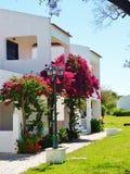 Villa portugaise avec la bouganvillée Image stock