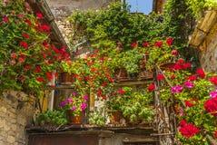 Villa a Sesta (Chianti) - House with plants and flowers. Villa a Sesta (Siena, Chianti, Tuscany, Italy) - Old house with potted plants and flowers stock image