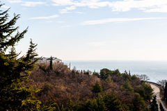 The Villa stands amongst cypress trees on the shore of the sea Stock Images