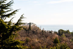 The Villa stands amongst cypress trees on the shore of the sea Stock Photography