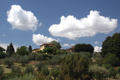 Villa in Tuscany. View across a vineyard to a large villa or cottage in the Tuscany region of Italy Royalty Free Stock Photos