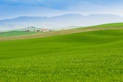 Villa in tuscany royalty free stock photos