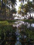 Village湖 图库摄影