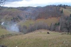 Village à la campagne dans les Carpathiens orientaux Image libre de droits